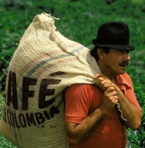 Colombia-coffe-rexfeatures_2132876a-e1362058389114